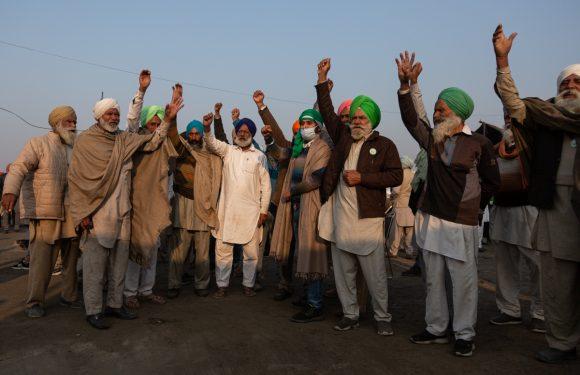 I contadini indiani sfidano i colossi dell'agroalimentare e il governo