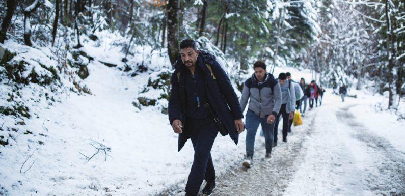 I numeri dell'asilo, in Italia e Europa