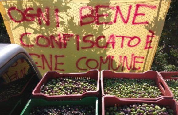 Inchiesta sui beni sequestrati sequestrati e confiscati in Sicilia. La relazione della Commissione regionale antimafia