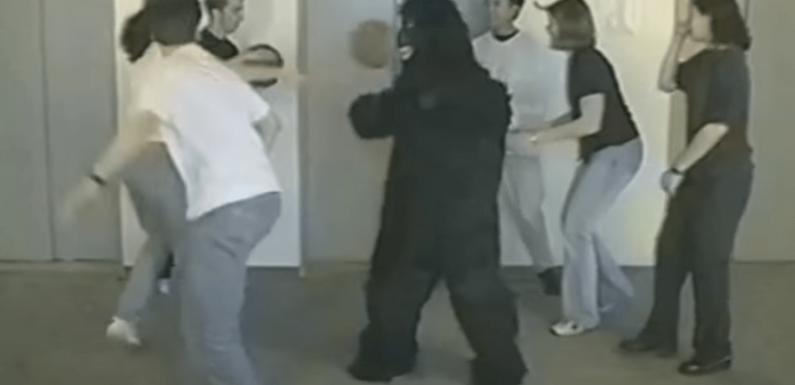"""Occhio al turismo della Lega, il gorilla """"invisibile"""" che ci potrebbe passare davanti"""