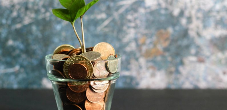 Quale finanza per una vera transizione ecologica