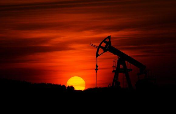 Transizione ecologica: che cosa fare per uscire dalla crisi climatica. E dall'ipocrisia