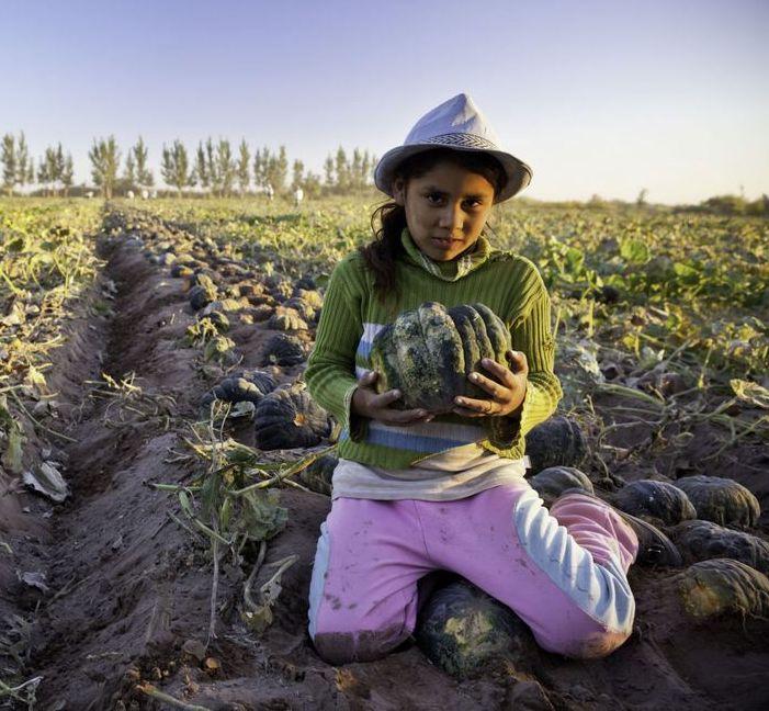 gallery-1465594587-giornata-mondiale-contro-lo-sfruttamento-del-lavoro-minorile