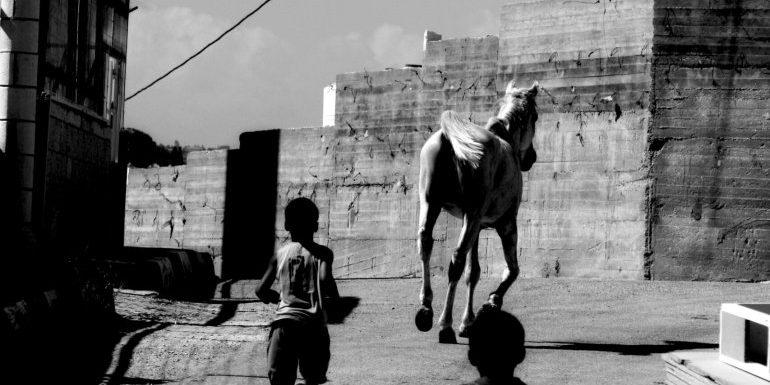 """""""Le strade dell'apartheid"""": il racconto di tre popoli lontani in lotta per la libertà"""