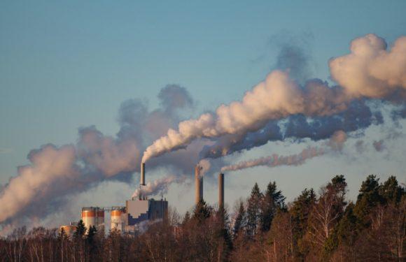"""Finanza e cambiamenti climatici, come evitare il """"cigno verde"""""""