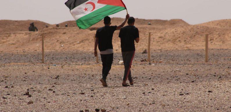 La lotta del popolo saharawi: «Dobbiamo rompere il silenzio»