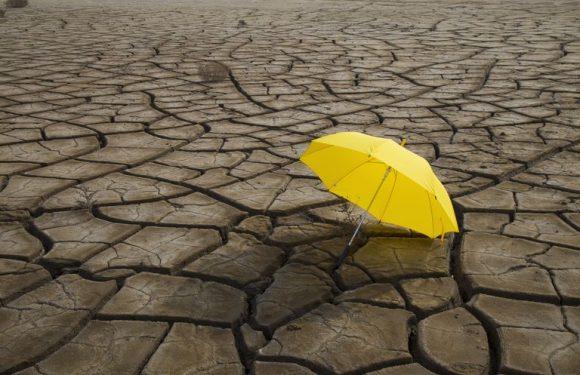 I migranti ambientali, l'altra faccia della crisi climatica