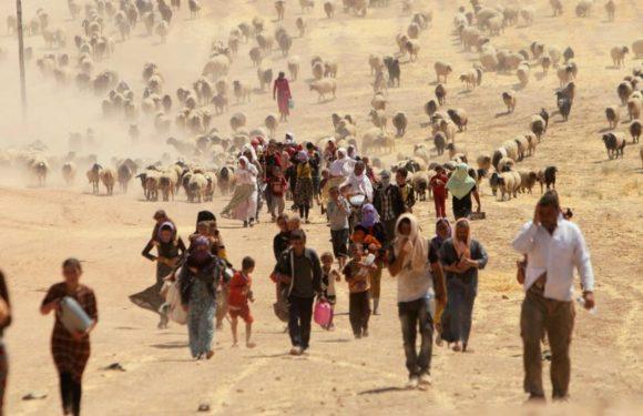 Il cambiamento climatico costringerà 216 milioni di persone a migrare
