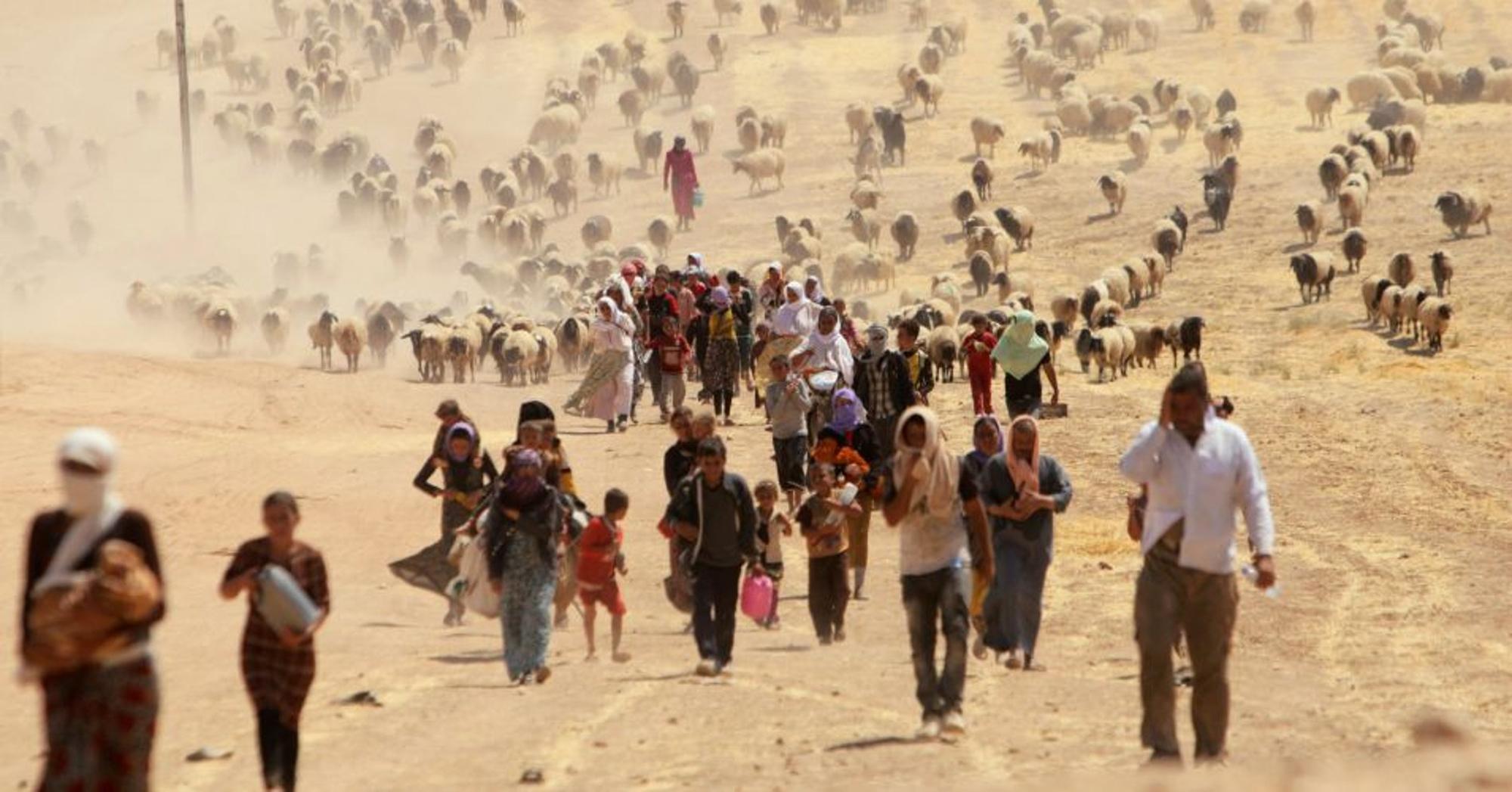 Migranti-ambientali
