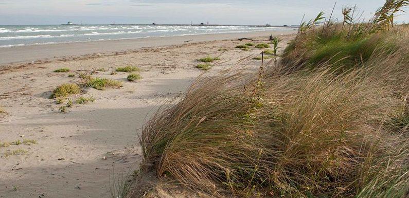 Il concerto per tutelare le dune degli Alberoni al Lido di Venezia